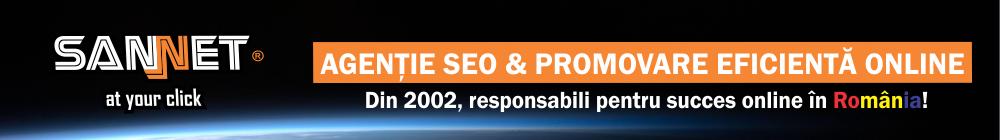 agentie SEO Bacau & promovare eficienta online