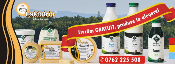 produse lactate Bucovina
